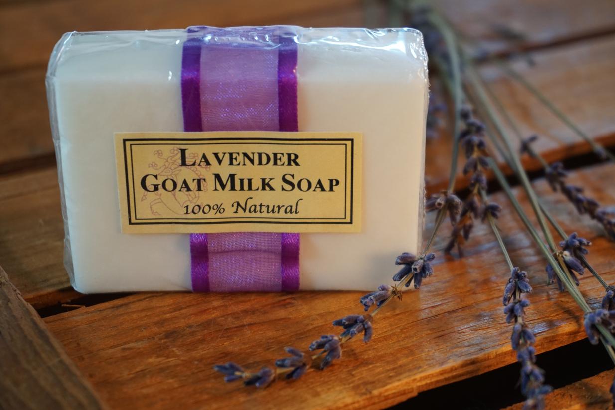 SOAP1_WEB